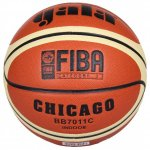Basketbalový míč Gala Profi Chicago BB 7011